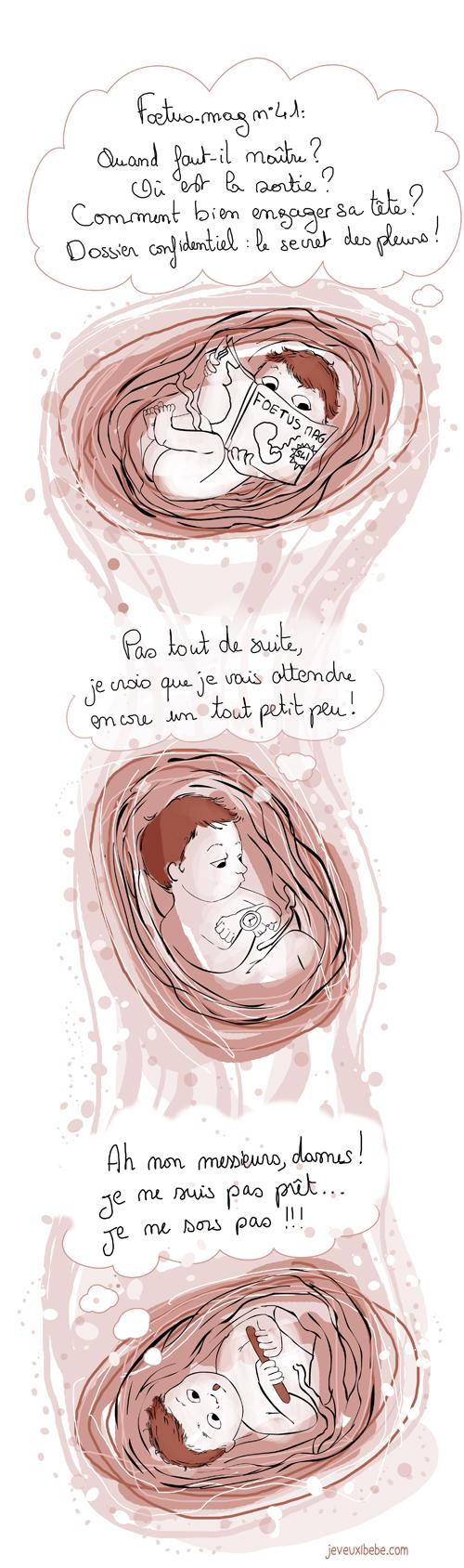 L'accouchement,Pendant ce temps... La vie in-utéro